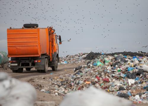 проблемы вывоза мусора, вывоз мусора в Одинцово, вывоз строительного мусора в Одинцово, вывоз строительного мусора в Одинцовском районе, вывоз мусора в Одинцовском районе, вывоз мусора одинцово, вывоз мусора в одинцовском районе, заказ контейнера на вывоз мусора, вывоз мусора контейнер 8 м³, вывоз мусора контейнер 27 м³, вывоз мусора контейнер 32 м³, вывоз мусора контейнер 36 м³, вывоз строительного мусора в одинцово, бункер для вывоза мусора, договор на вывоз тбо